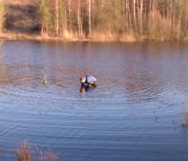 Makáč čistí rybník